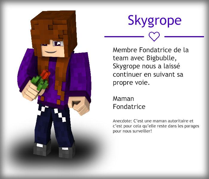 Skygrope