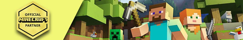 Banniere Minecraft Partner